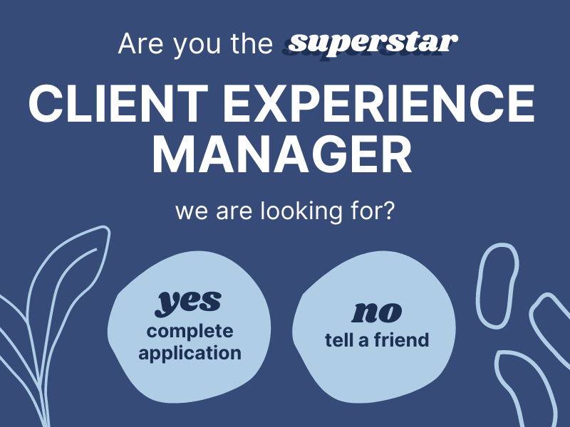 Client Experience Manager