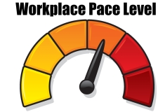 Dashboard-Job-Workplace-Pace
